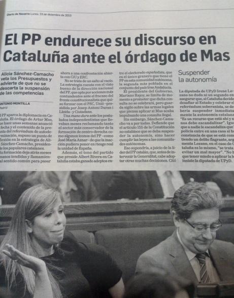 Cat Diario Navarra1
